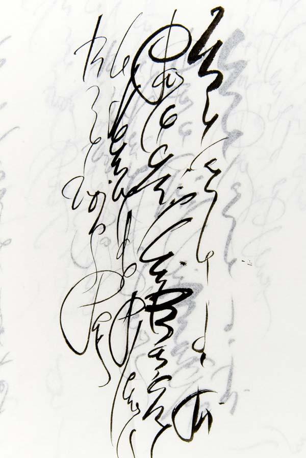http://www.typogabor.com/Media/soheil_training_blog/Soheil_DSC_8420.jpg