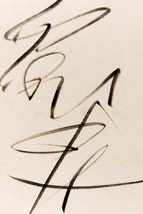 http://www.typogabor.com/Media/soheil_training_blog/Soheil_DSC_8442.jpg